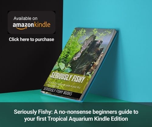 seriously fishy amazon kindle book advert 1