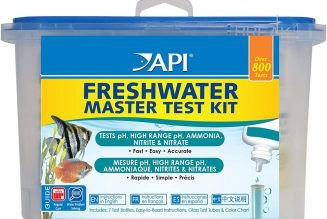 API Master test kit pH shock Trump the red texas