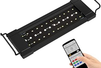 nicrew led review 1