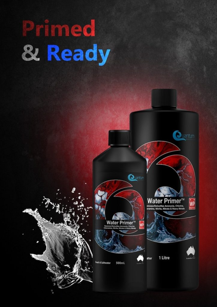 quantum freshwater UK best aquarium water conditioner