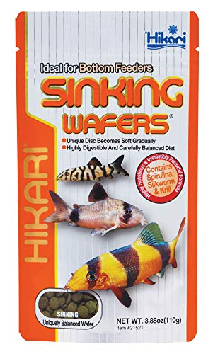 Hikari Tropical Sinking Wafers for Catfish Loaches and Bottom Feeders 388 oz 0